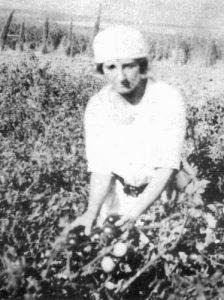 מאירסון עובדת בשדות של מרחביה במהלך שנות ה-20