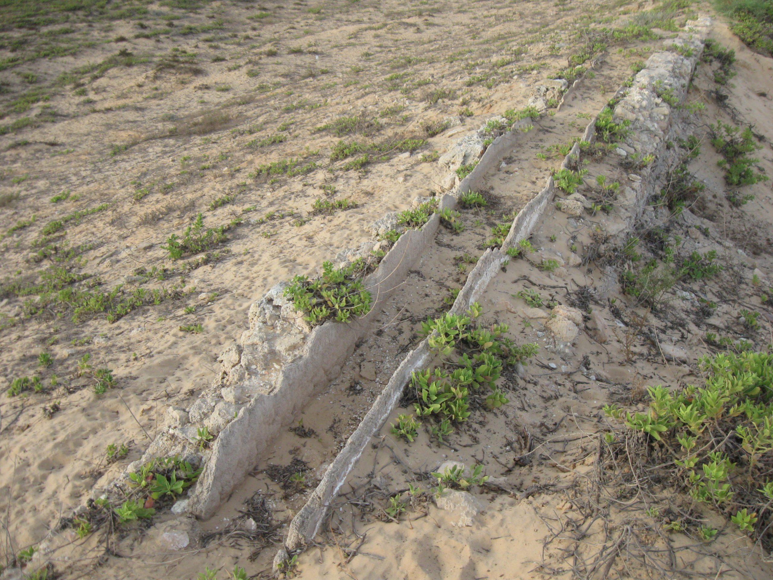 שרידי תעלת המים על האמה הגבוהה