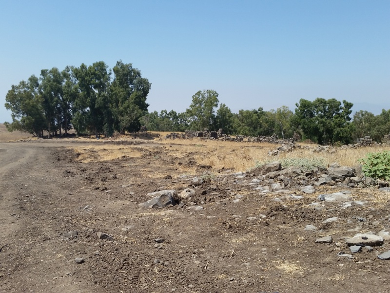 אתר העתיקות בחרבת אחמדיה