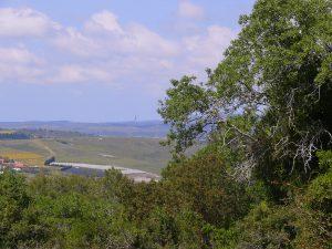 מבט צפונה-מערבה מפסגת הר חורשן. במרכז התמונה ניתן לראות את המגדל של אוניברסיטת חיפה.