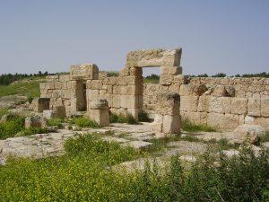 בית הכנסת מכיוון צפון-מזרח