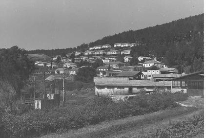 מראה כללי של קיבוץ קריית ענבים, 1964
