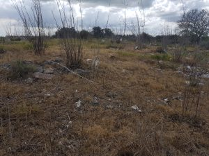 דלית אל רוחה - בית קברות