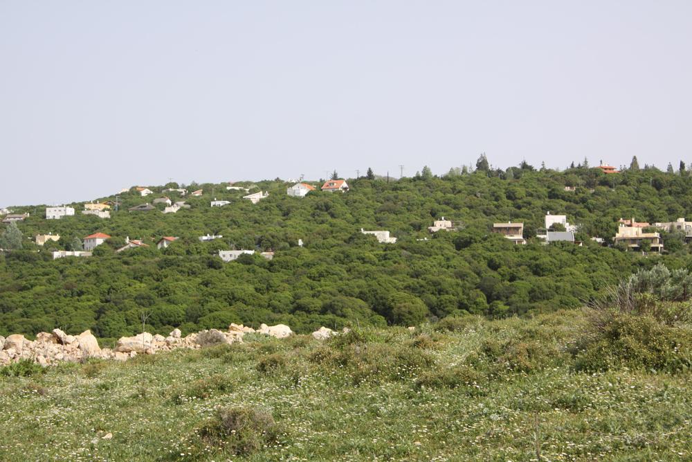 מצפה הילה