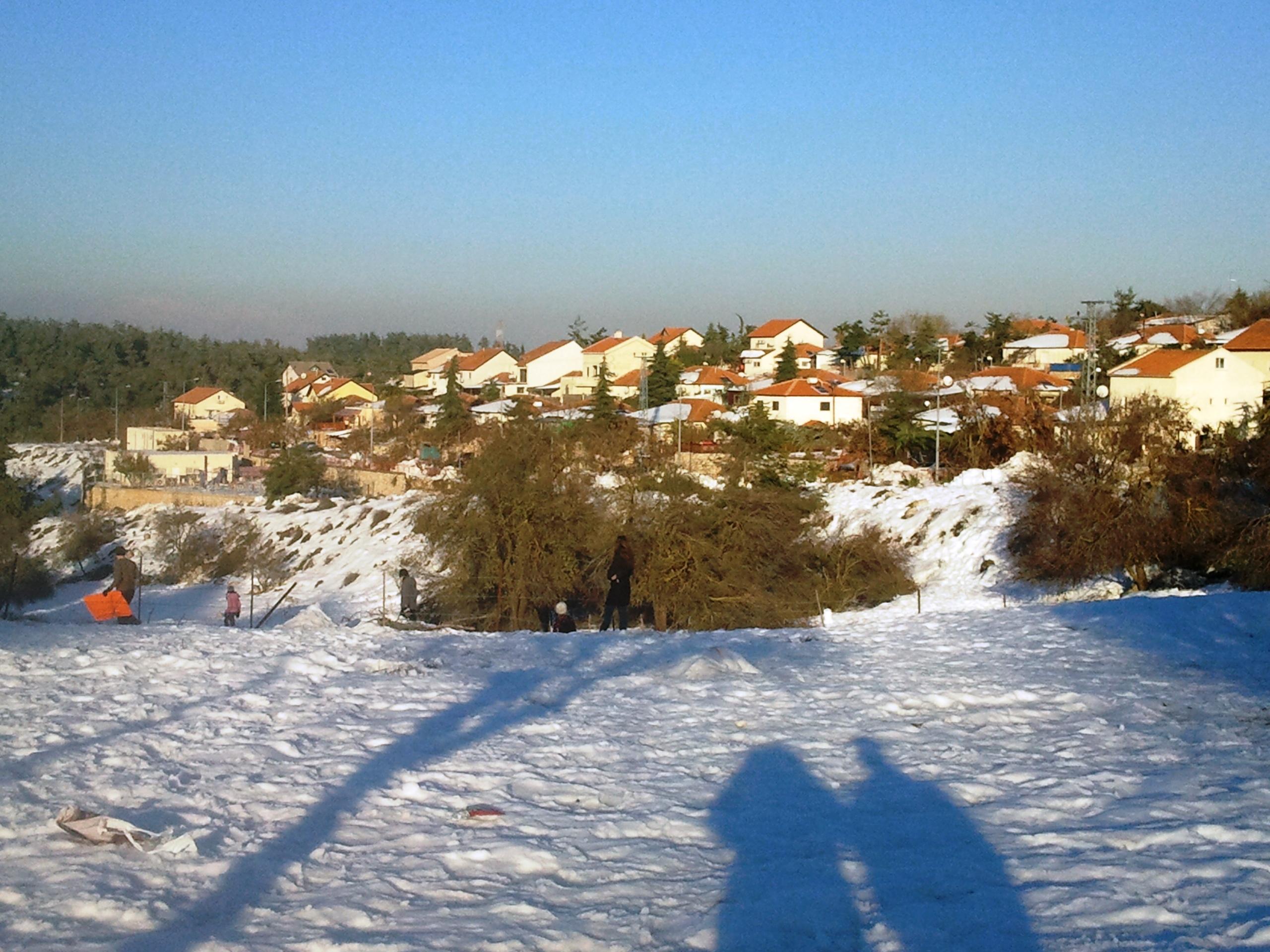 ביריה בשלג
