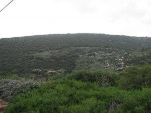 הר שכניה