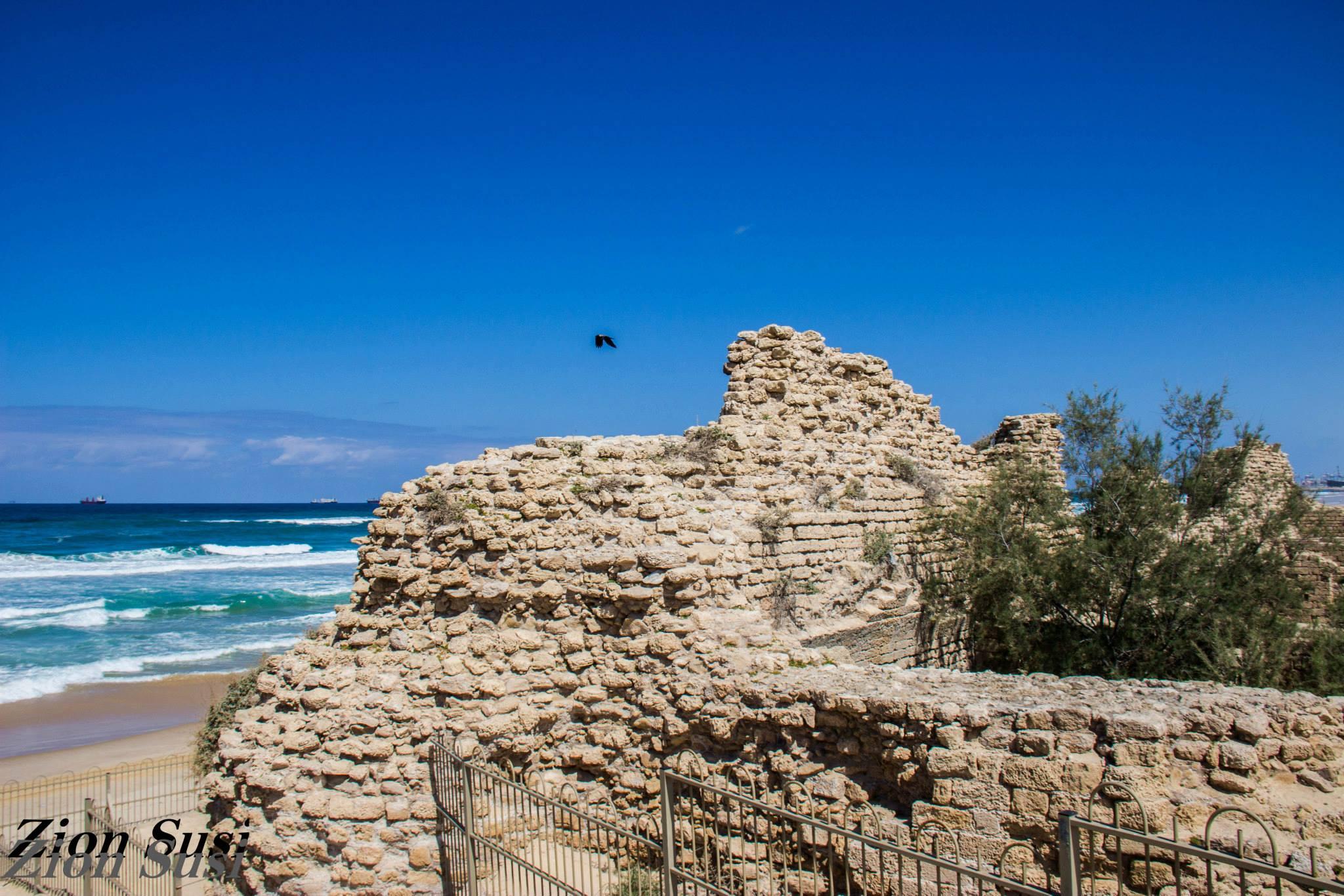 מצודת אשדוד