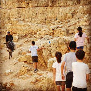 סיור במדבר
